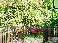 casa-de-la-hiedra-terraza