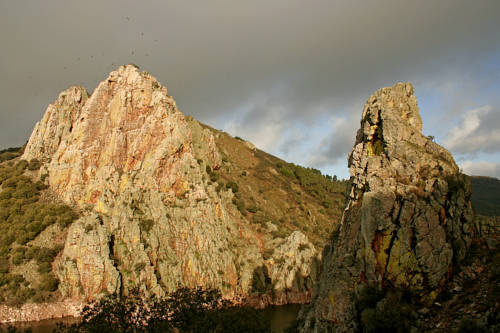 Bungalows Camping Parque Nacional de Monfragüe