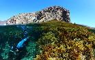 Snorkel-cabo-de-gata