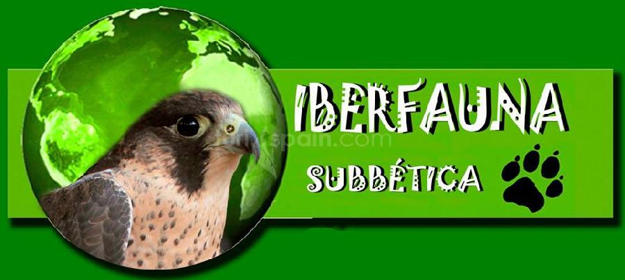 Logo Iberfauna