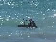 waterstart kite lessons