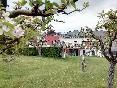 Villa iacca jardín