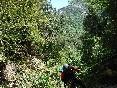 paisaje-descenso-barrancos