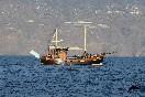 Excursión bussard en barco