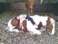 Darío-durmiendo-encima-del-pío