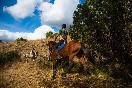 Rutas a caballo por extremadura (1)