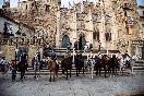 Rutas a caballo por extremadura (2)