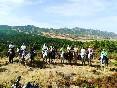 Rutas a caballo por extremadura (19)