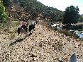 Rutas a caballo por extremadura (23)