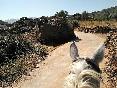 Rutas a caballo por extremadura (27)