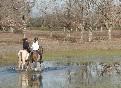 Rutas a caballo por extremadura (39)