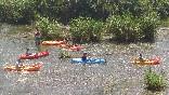 Canoas (4)