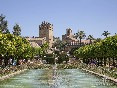 Alcazar_reyes_cristianos_cordoba_jardines_05