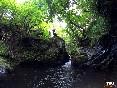 Tikiaventura