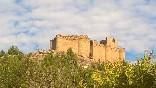 Castillo davalillo (1)