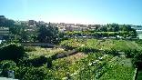 Huerta de Cella