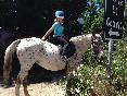Rutas a caballo (2)
