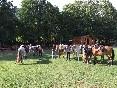 Rutas a caballo (5)