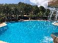Aguila-daurada-piscina