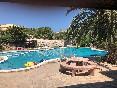 Aguila-daurada-piscina-