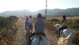 Entre toros y caballos (18)