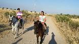 Entre toros y caballos (21)