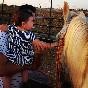 Entre toros y caballos (31)