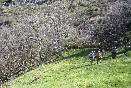 Casa-rural-el-balcon-de-sotillo-entorno-senderismo