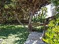 Apartamentos-isabel-jardín